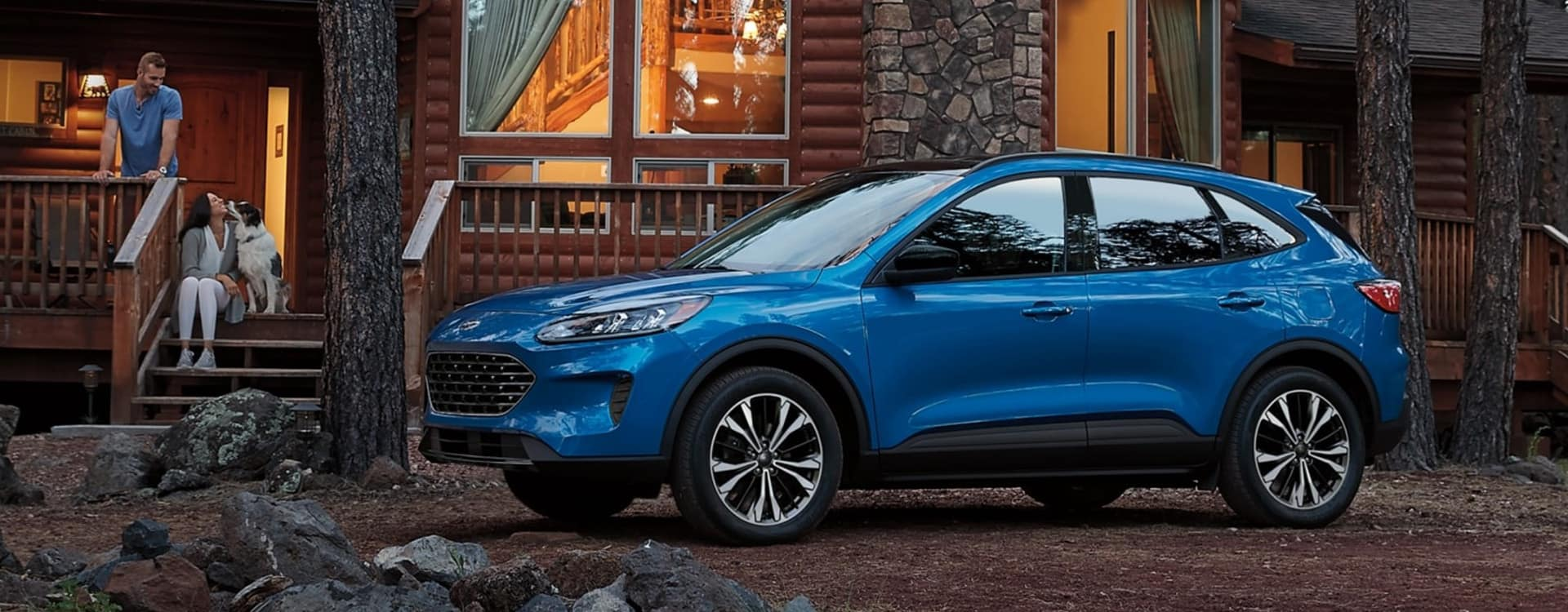 2021 Ford Escape near St. Louis