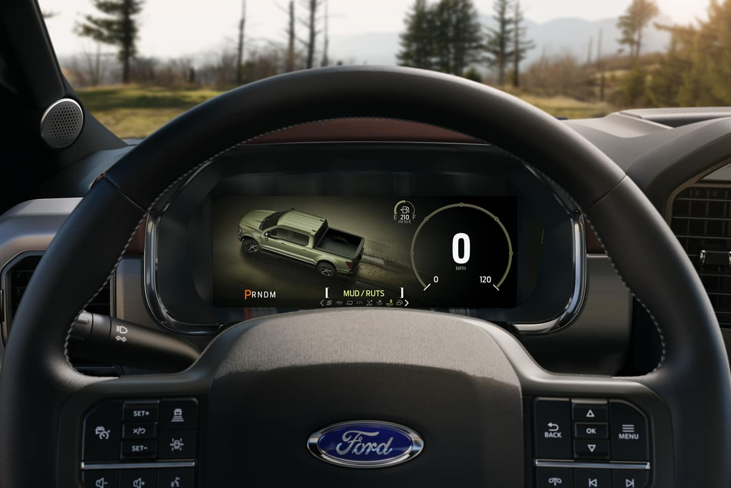 Picture of a Ford F-150 Steering wheel.