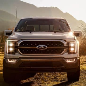 A great look at the front view of a Ford F-150 truck available for order.
